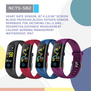 NCTS-SB2