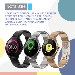 NCTS-SB6